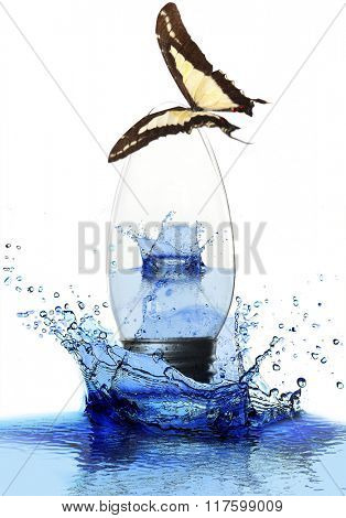 Colorful butterfly sitting on light bulb in water splash isolated on white