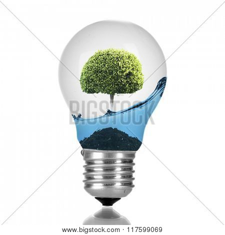 Green eco energy concept. Tree growing inside light bulb with water, isolated on white