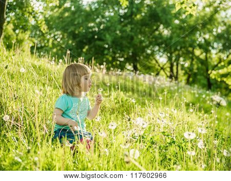 Happy little girl on the field with dandelions