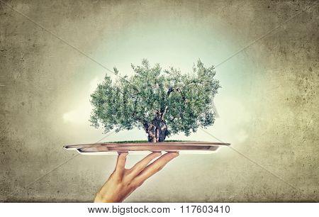 Tree on metal tray