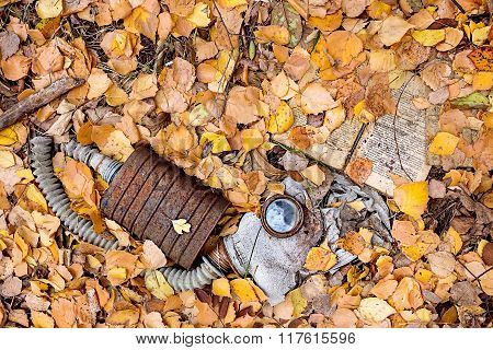 Decompose protective mask lying in fallen leaves. Chernobyl nucl