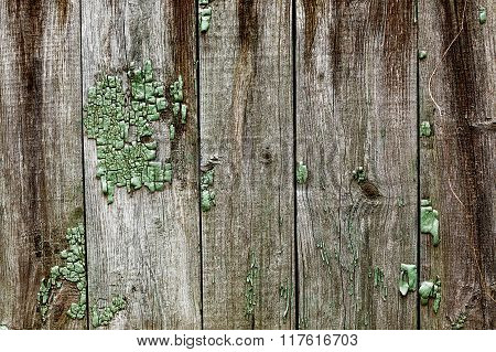 weathered boards chernobyl