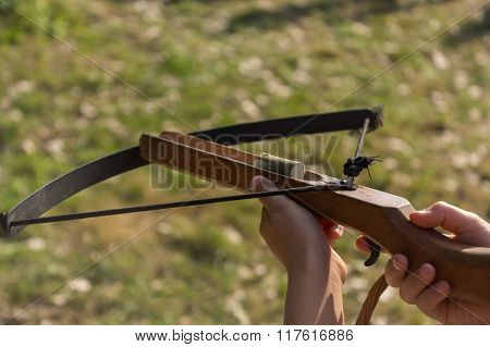 Crossbow In Hand
