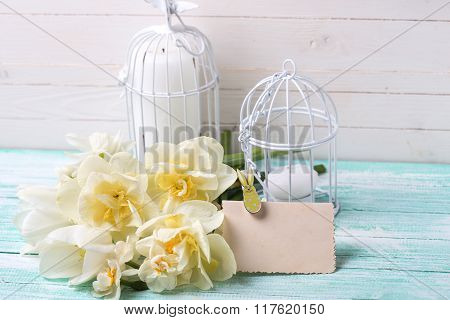 Background With Fresh Spring Flowers, Tag And Candles In Decorative Bird Cages