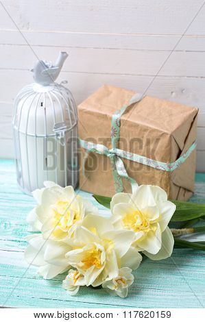 Postcard with fresh daffodils flowers candle and gift box
