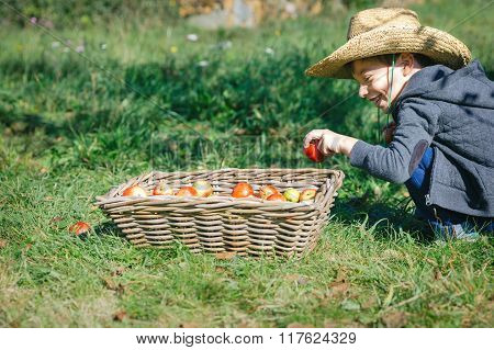 Happy kid putting apple in wicker basket with harvest