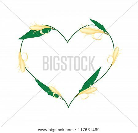 Yellow Michelia Alba Flowers In A Heart Shape