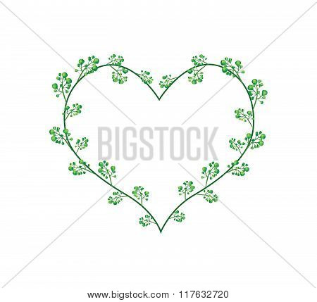 Flowers Of Neem In A Heart Shape