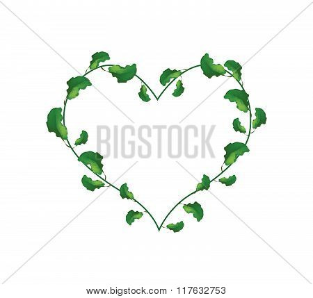 Evergreen Leaves In A Heart Shape Wreath