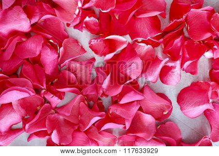 Beautiful flower petals on the table