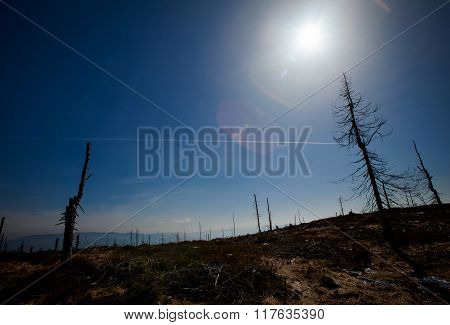 Beautiful autumn sunny photo taken in Beskid mountains
