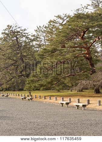 The Beautiful Park With Benches