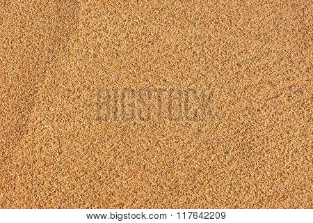 Sandy beach background and detailed sand texture.
