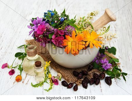 Wild Flower And Herb Leaf In Mortar