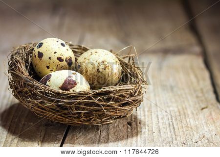 Three Quail Eggs In A Nest On A Rustic Vintage Wooden Background, Copy Space, Close Up