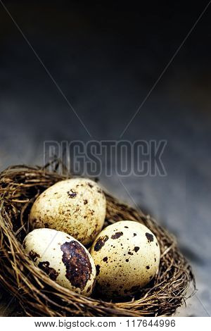 Nest In The Corner With Three  Eggs Against A Dark Rustic Vintage Background, Generous Copy Space