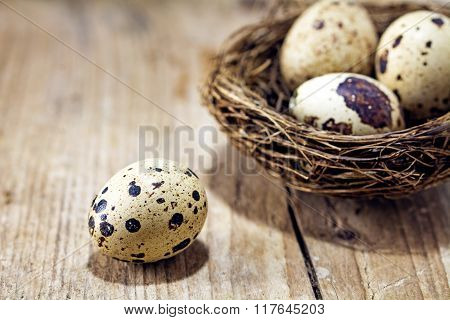 Egg On A Rustic Wooden Board And Nest With Three Eggs Blurred In The Background, Concept For Easter,