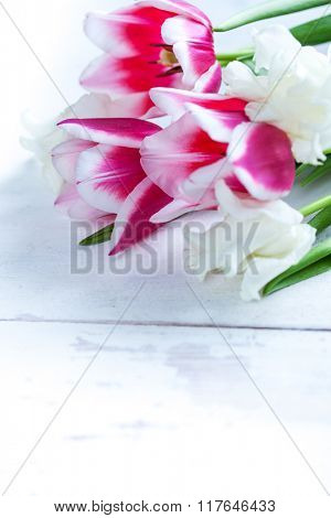 Tulip flowers in white basket