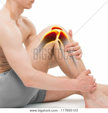 Young Man Knee Pain Anatomy Isolated On White