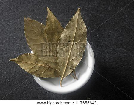 bay leaf on the black slate