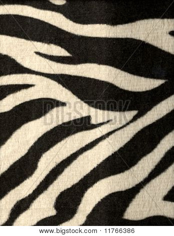 Zebra Fur Pattern