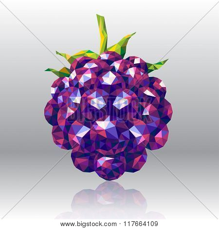 Wild Forest Berry in Polygon Style