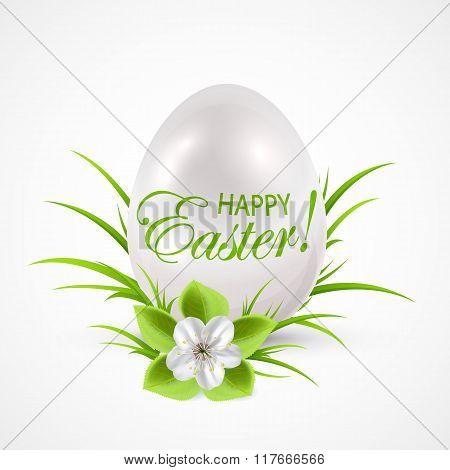 White Egg On The Grass