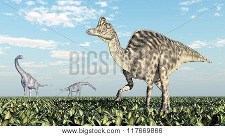 Brachiosaurus and Velafrons