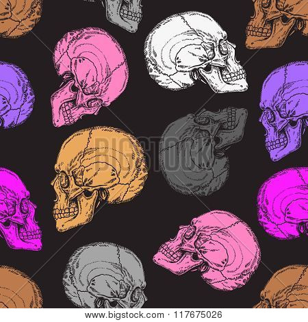 Seamless Pattern With Grey, Pink, White And Brown Skulls.eps