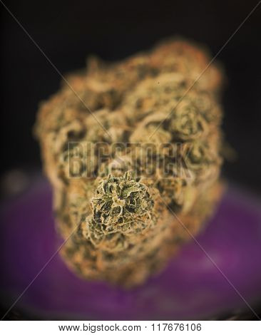 Macro detail of dried medical cannabis bud