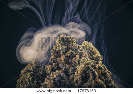 Dried marijuana flowers isolated on black with smoke rings