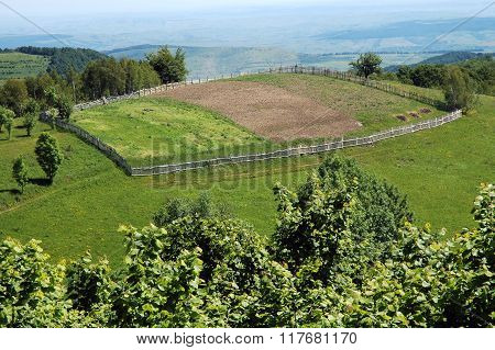 Arable Agriculture Field In Spring
