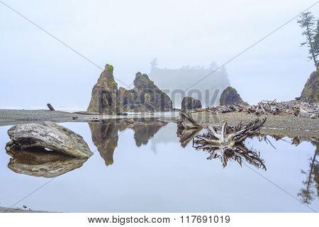 Fog on Ruby Beach, the most beautiful beach, Olympic National Park ,Washington, USA