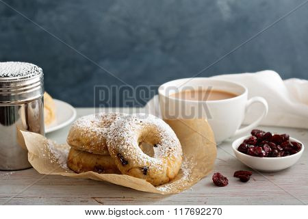 Vanilla baked donuts with dried cranberries