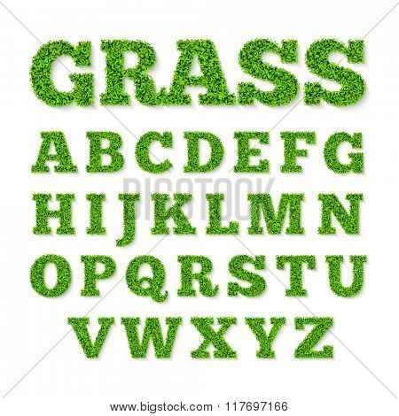 Green grass alphabet. Vector illustration.