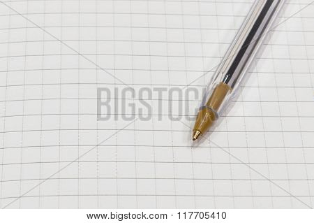 pen on a white sheet of paper in the cage close up