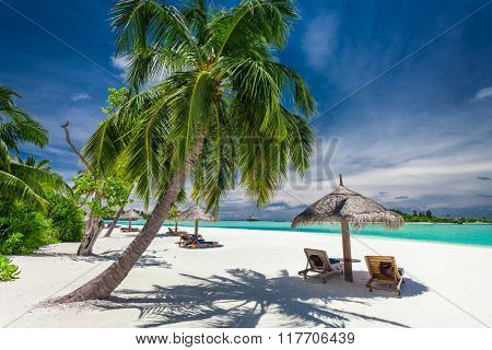 Tropical coastline with palm trees and beautiful sand. Exotic beach scene.