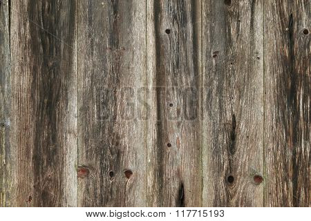 Closeup background texture photo of rustic weathered barn wood
