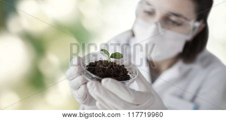 science, biology, ecology, research and people concept - close up of young female scientist wearing protective mask holding petri dish with plant and soil sample over green background