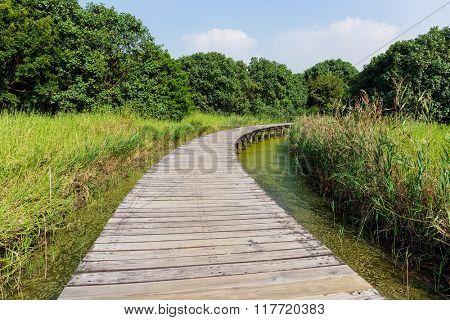 Small bridge through a river