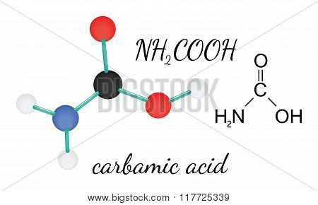 NH2COOH carbamic acid molecule