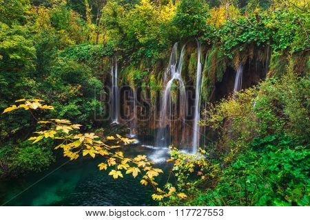 Croatia. Plitvice Lakes. Branch With Yellow Leaves Against The Backdrop Of A Waterfall