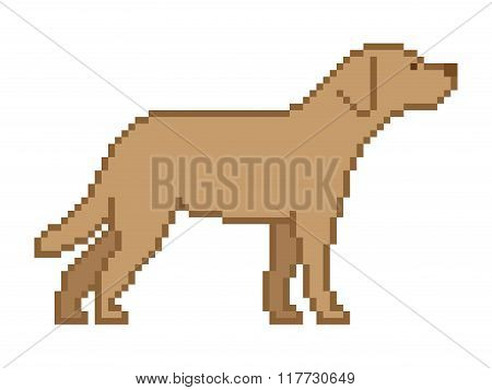 Vector Pixel Art Dog On A White Background.
