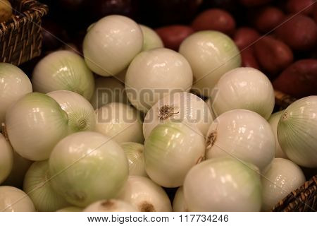 White Bulb Onions For Sale