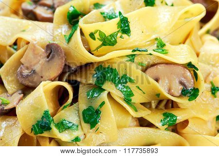 Pappardelle Pasta with mushrooms and other herbs. close up