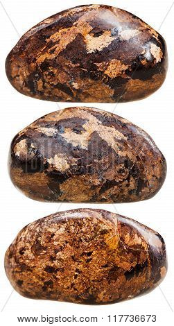 Three Tumbled Bronzite Gemstones Isolated