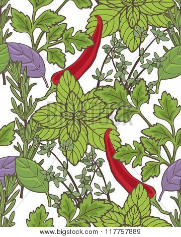 Herbs seamless pattern, food background