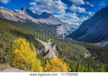 The picturesque canyon in sunny autumn day. At the edge of canyon takes excellent highway. Canadian Rockies, Banff National Park