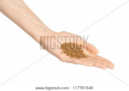 Spices And Cooking Theme: Man's Hand Holding A Bunch Of Dried Cumin Isolated On White Background In