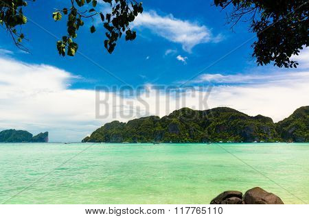 Jungle and Sea Green View